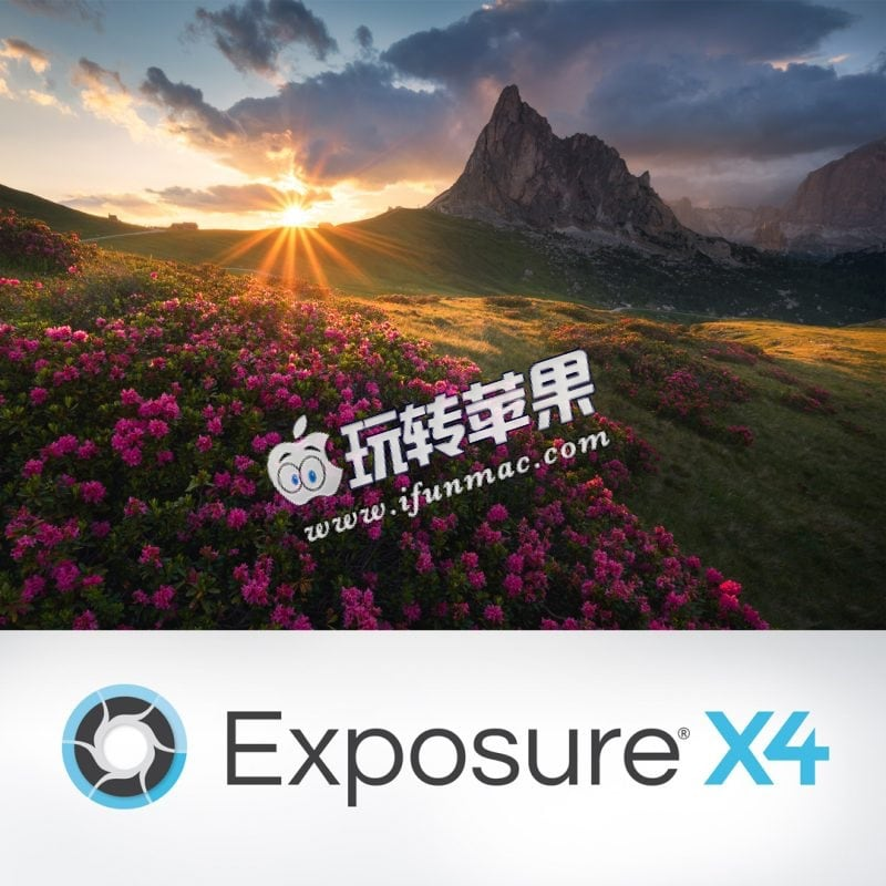 Exposure X4 Bundle 截图