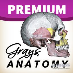 Gray's Anatomy Premium Edition for Mac 1.5 破解版下载 – 灰色的解剖